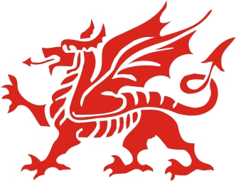 Welsh Dragon Vinyl Sticker